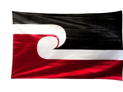 Tino Rangatiratanga Maori Flag - large maori flag